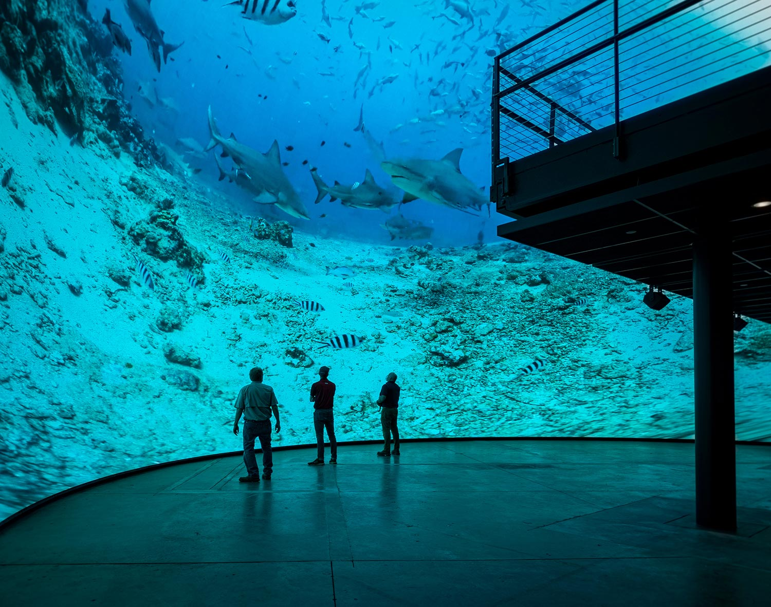 Underwater imagery on DomeX LED Dome
